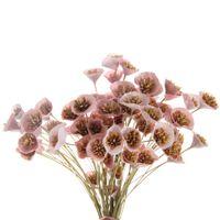 Bouquet-2vrd-Variado-Miuditas
