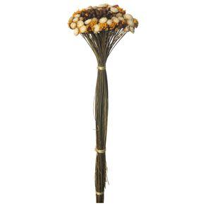 Bouquet-Natural-multicor-Galheiros