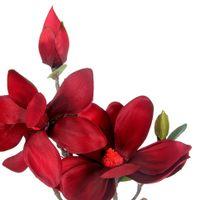 Charming-Magnolia-Flor-Vermelho-Hindu-verde-Flores