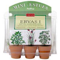 Ervas-Terra-verde-Mini-Estufa