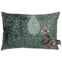 Passaro-Capa-De-Almofada-45x30-Verde-Escuro-multicor-Natureza