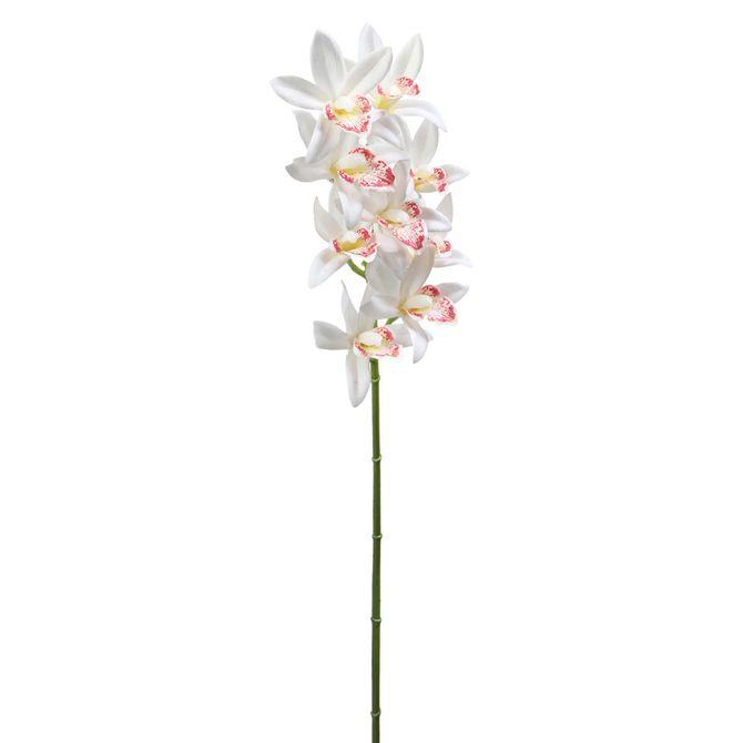 Flor-Orquidea-Branco-verde-Claro-Artemis