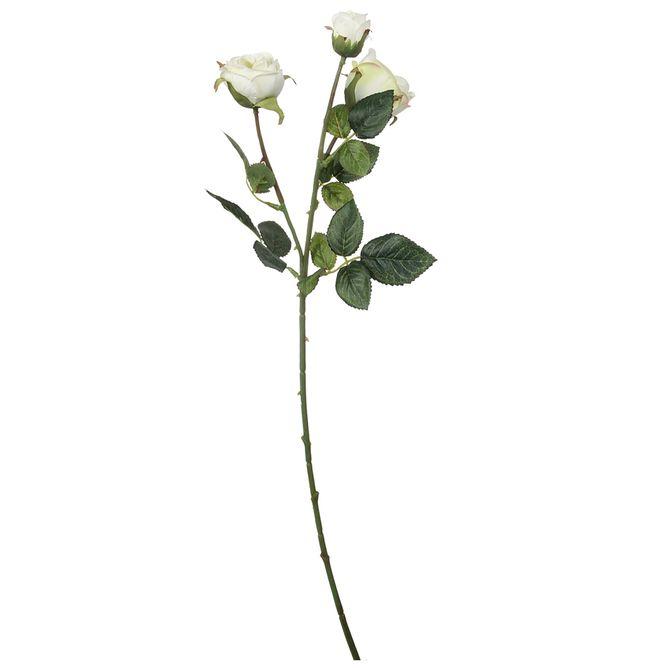 Mini-Rose-Rosa-Flor-Branco-verde-Flores