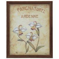 Ardenne-Quadro-23-Cmx-28-Cm-Nozes-multicor-Parc-Naturel