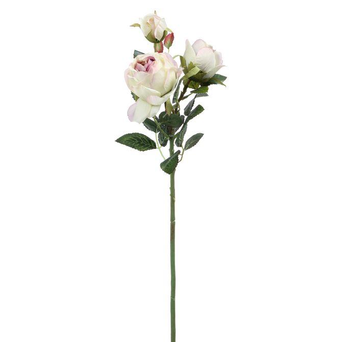 Flor-Peonia-Rosa-Claro-verde-Beliz