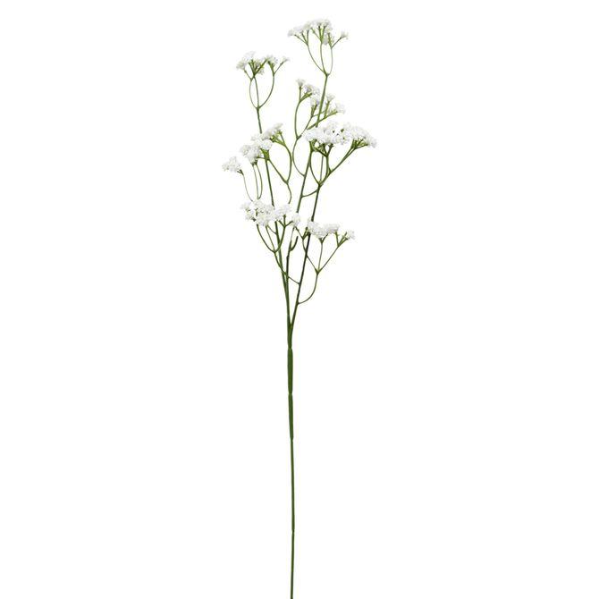 Flor-Gypsophila-Branco-verde-Campestre