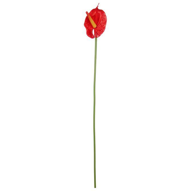 Red-Victory-Anturio-Flor-Vermelho-verde-Flores