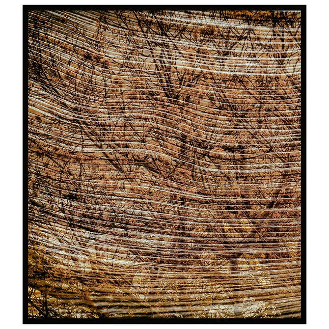 Tronco-I-Quadro-80-Cm-X-90-Cm-Marrom-preto-Galeria-Site