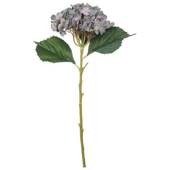 Serena-Hortencia-Flor-Lilas-verde-Flores