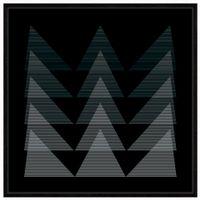 Fineline-I-Quadro-1-M-X-1-M-Preto-branco-Galeria-Site