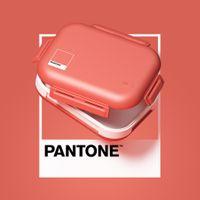 Porta-refeicao-Flamingo-Pantone