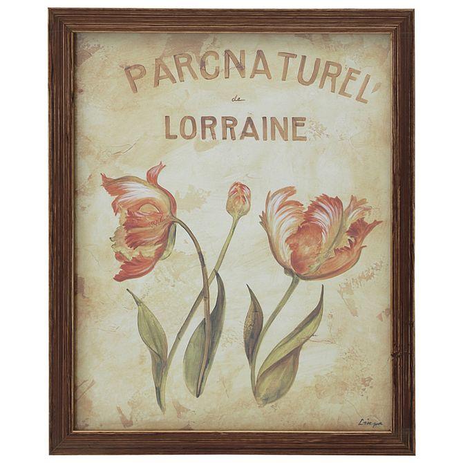 Lorraine-Quadr-23-Cmx-28-Cm-Nozes-multicor-Parc-Naturel