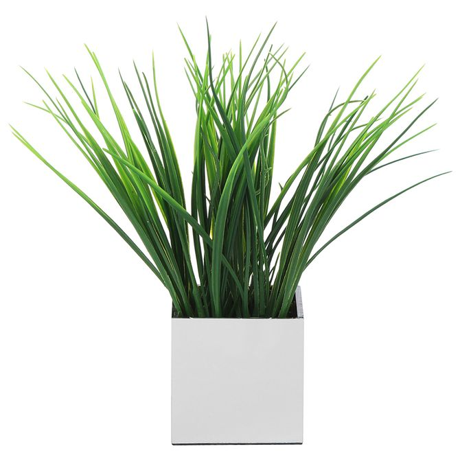 Grama-Mini-Arranjo-Prata-verde-Esplendor