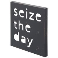 Placa-Decor-30-Cm-X30-4vrd-Multicor-Seize-The-Day