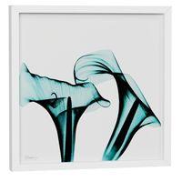 raio-x-ii-quadro-30-cm-x-30-cm-branco-turmalina-flores-raio-x_spin5