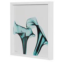 raio-x-ii-quadro-30-cm-x-30-cm-branco-turmalina-flores-raio-x_spin9