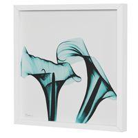 raio-x-ii-quadro-30-cm-x-30-cm-branco-turmalina-flores-raio-x_spin8