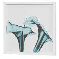 raio-x-ii-quadro-30-cm-x-30-cm-branco-turmalina-flores-raio-x_spin7