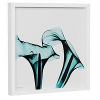 raio-x-ii-quadro-30-cm-x-30-cm-branco-turmalina-flores-raio-x_spin4