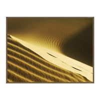 iii-quadro-102-m-x-77-cm-natural-natural-dunes_ST0