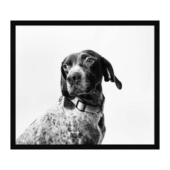 quadro-37-cm-x-32-cm-preto-branco-companheiro_ST0