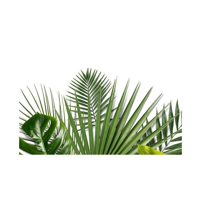 i-quadro-60-cm-x-40-cm-branco-verde-folhagem_ST0