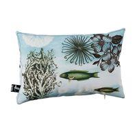 de-flores-capa-almofada-30x45-multicor-mar_spin2