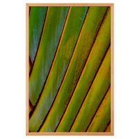 quadro-60-cm-x-40-cm-verde-multicor-folhagem-trancoso_ST0