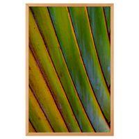 i-quadro-60-cm-x-40-cm-verde-multicor-folhagem-trancoso_ST0