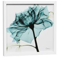 raio-x-i-quadro-30-cm-x-30-cm-branco-turmalina-flores-raio-x_spin5