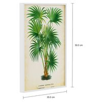Palm of the trop ii quadro 35 cm x 50 cm