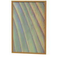 trancoso-i-quadro-60-cm-x-40-cm-verde-multicor-folhagem-trancoso_spin7